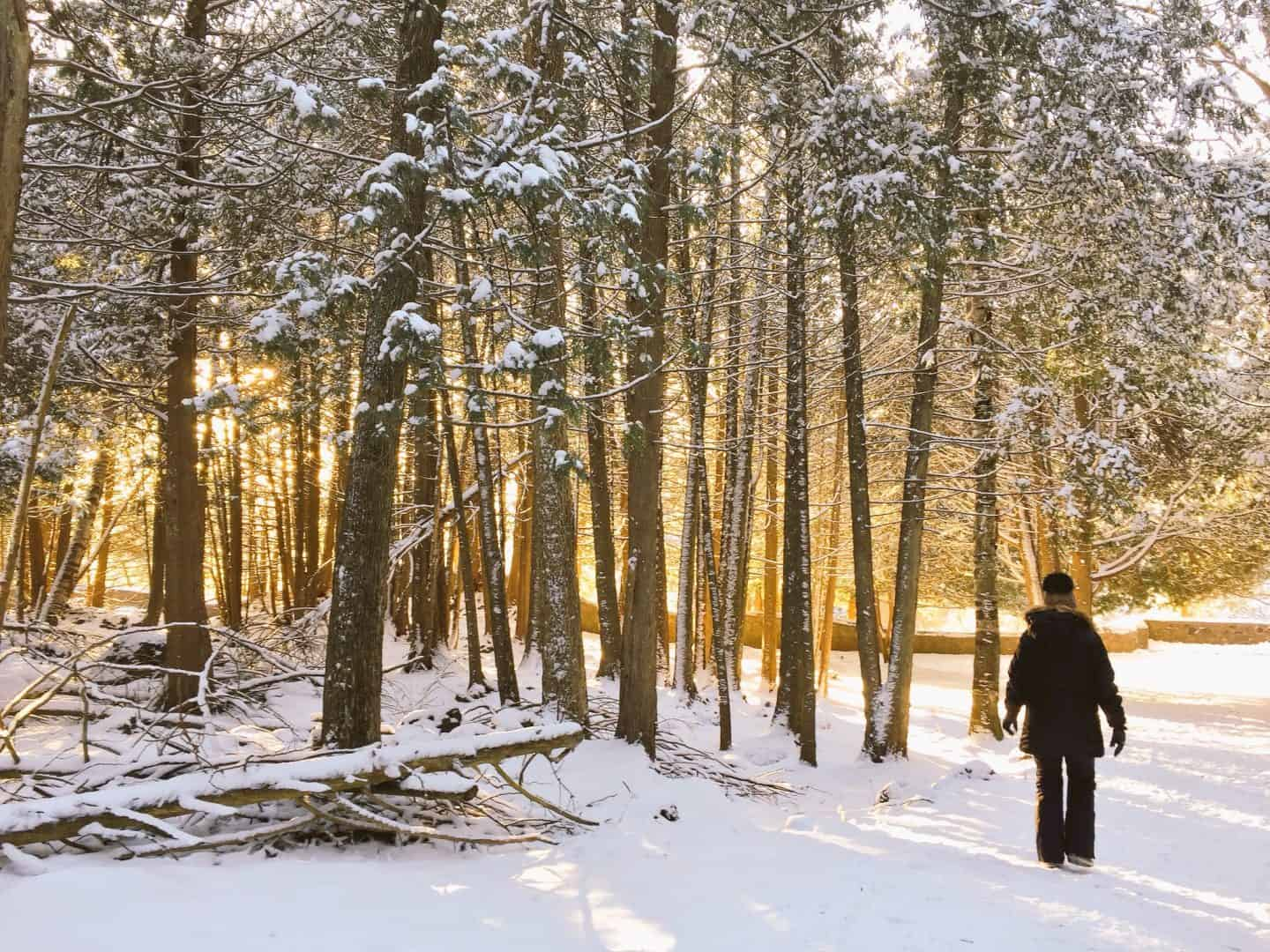 blue-mountain-activities-in-winter-ontario