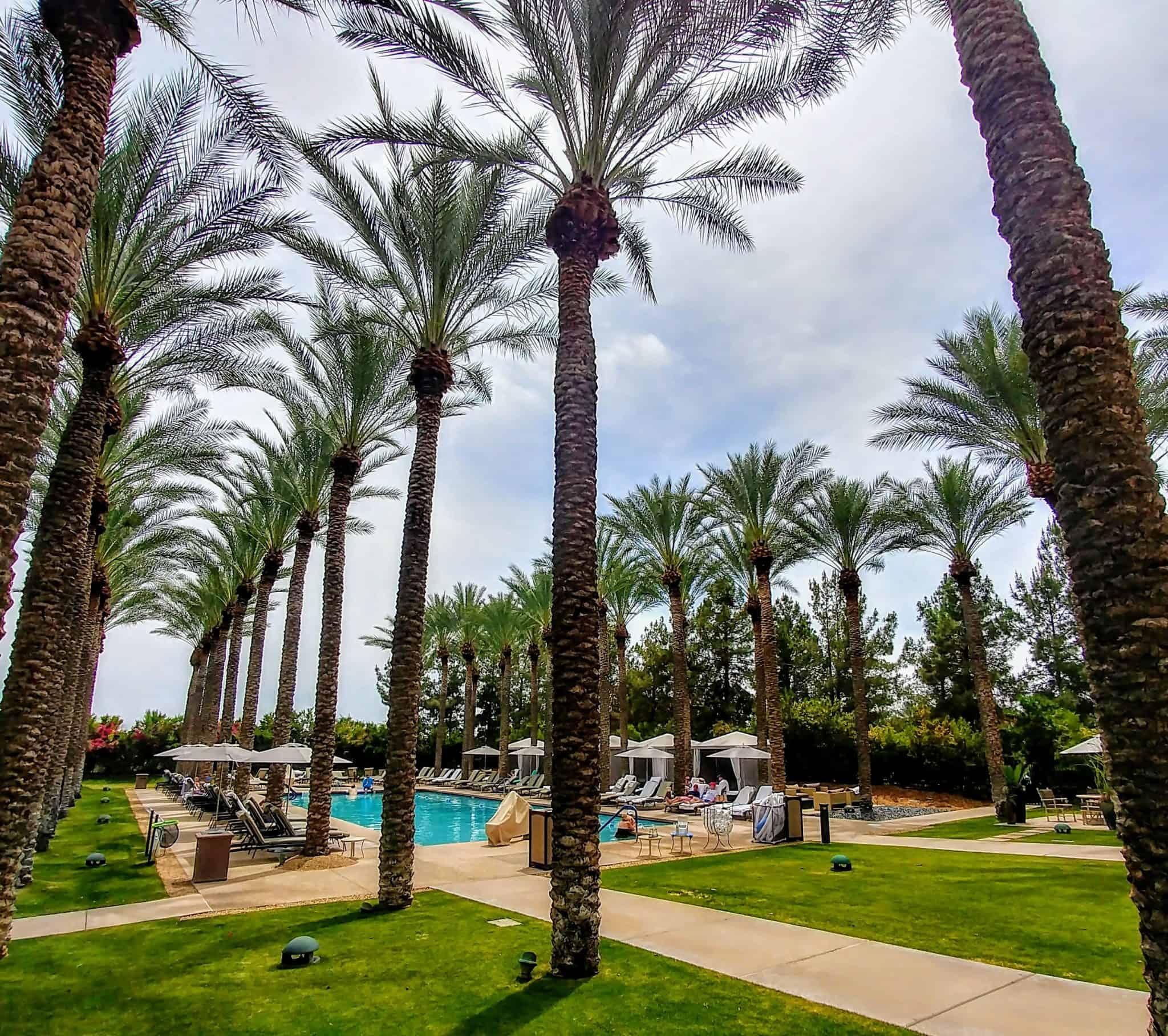 JW Marriott Scottsdale Arizona Pool Area with palm trees and umbrellas