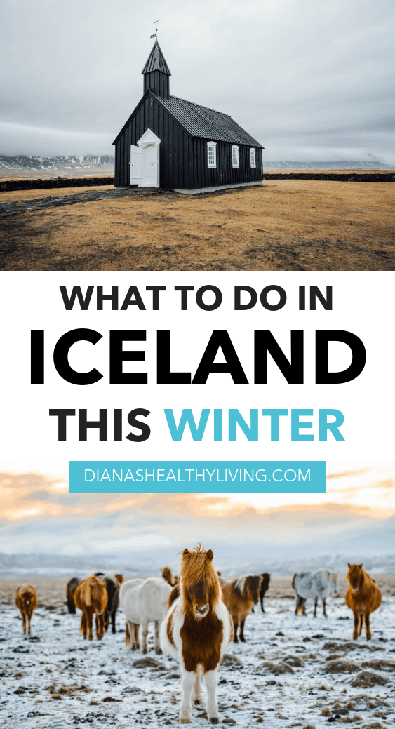 Best Golden Circle Tour Iceland