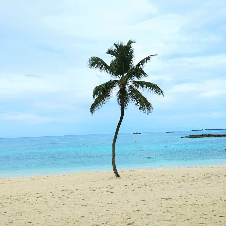 a t l a n t i s atlantis atlantis - bahamas where is atlantis in bahamas atlantis  bahamas atlantis ahamas atlantis at the bahamas atlantis bagamas atlantis baha atlantis bahama atlantis bahamaas atlantis bahamad atlantis bahamas atlantis bahamhas atlantis bahamma atlantis bahammas atlantis las bahamas atlantis on bahamas atlantis the bahamas atlas bahamas atlanta bahamas paradise island paradıse ısland hotel atlantis atlantis - resort bahama resort resort bahamas the leap of faith atlantic resort atlantis re atlantis resort atlantis resorte atlantis resorts resort atlantis bahamas resorts atlantis paradise island atlantis paradise islands bahamas atlantis paradise island resort resort paradise island atlantic hotel in bahamas atlantic hotel in the bahamas atlantis bahama hotel atlantis cove atlantis hotel in bahamas atlantis hotel the bahamas atlantis on paradise island atlantis the cove bahamas hotel atlantis bahamas hotels atlantis bahamas paradise islands paradise island bahamas paradise island the bahamas the bahamas paradise island water park aquaventure atlantis bahama resort atlantis bahamas resort atlantis resort bahama atlantis resort bahamas atlantis resort in bahamas atlantis resort the bahamas atlantis resorts bahamas bahamas atlantis resort bahamas resorts atlantis hotel in bahamas atlantis the atlantis hotel in the bahamas the atlantis resort bahamas the cove at atlantis the cove atlantis atlantis aquarium atlantis aquariums atlantis casinos atlantis map aquaventure at atlantis aquaventure atlantis hotel atlantis en las bahamas hotel atlantis las bahamas hotel bahamas atlantis map atlantis maps atlantis اتلانتس the coral atlantis nassau nassau atlantis atlantis in nassau cove bahamas the atlantis атлантис all inclusive bahamas atlantis all inclusive to atlantis bahamas atlantis in paradise island bahamas atlantis paradise island bahamas atlantis paradise island in the bahamas atlantis paradise islands bahamas atlantis reef atlantis the reef bahamas al