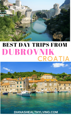 Planning a trip to Dubrovnik? Learn more about where to visit with our list of the top day trips from Dubrovnik: Lokrum, Cavtat, Montenegro .....