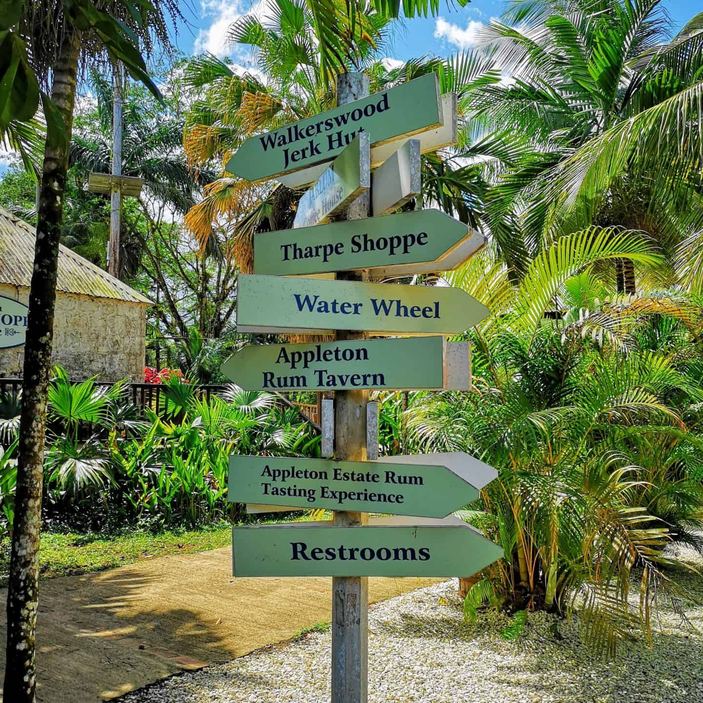 The Best Montego Bay Excursions Diana S Healthy Living