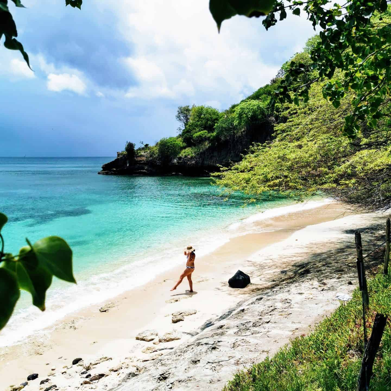 Laluna resort Grenada secluded beach