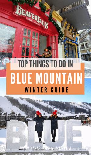 blue mountain activities winter