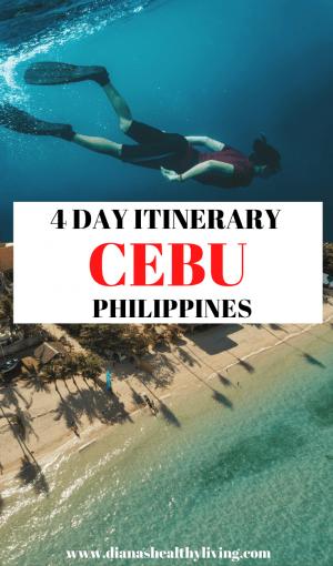 Cebu Itineary