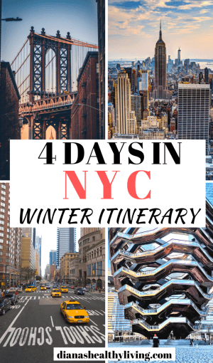 4 DAYS NEW YORK ITINERARY  NEW YORK IN THE WINTER