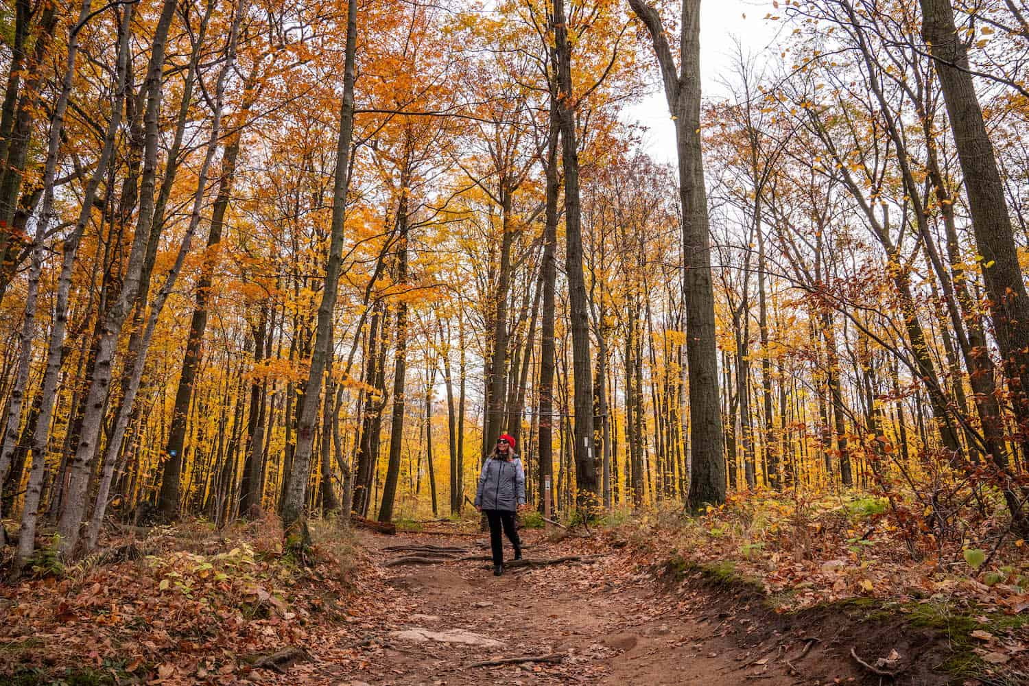 Hiking Trails in Toronto